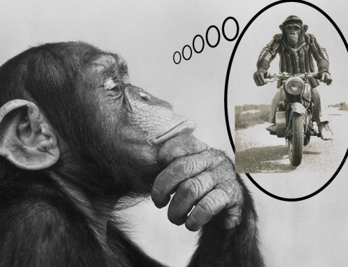 I Want To Join The Sport of Motorcycling part 1